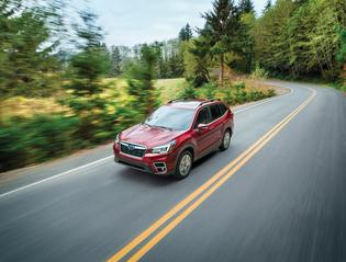 2019 Forester Limited