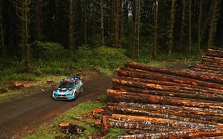 The #75 Subaru WRX STI of David Higgins and Craig Drew on the logging roads of Washington statePhoto credit: Matthew Stryker