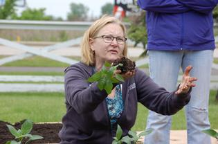 Kim Isaacson from the University of Illinois Extension Master Gardener providing garden and planting training to Volunteers and Lambs Farm Staff and Participants.