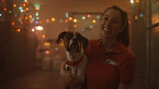 2019 Subaru Share the Love® Event Commercial – Owners Care (Compilation)
