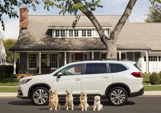 "Subaru of America debuts the third iteration of ""Dog Tested. Dog Approved."" spots with The Barkleys (2018)"