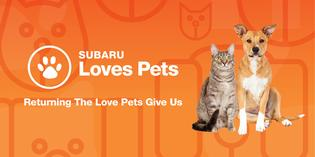 Subaru Partners with Humane Animal Welfare Society to Help Pets Find Loving Homes At the Greater Milwaukee Auto Show